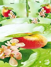 Постельное белье ТомДом Apple
