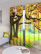 Комплект фотоштор ТомДом Осенний дуб шторы томдом фотошторы осенний дуб