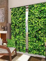 Комплект фотоштор ТомДом Зеленая стена